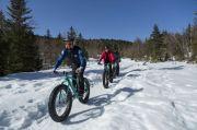 Vélo Fat-Bike Electrique Balades dans les Vosges Vosges du 23-12-2020 à 10:00 au 01-03-2021 à 18:00