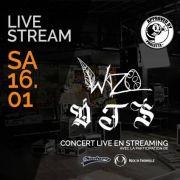 Concert en ligne Chez Paulette Wazo + Devotion to Suffering