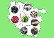 Agri-Cultures Insolites en Lorraine Meurthe-et-Moselle, Vosges, Meuse, Moselle du 03-03-2021 à 10:00 au 31-12-2021 à 20:00