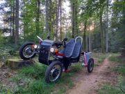 Insolite Swincar dans les Vosges