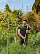 Cours de Jardinage Jardin d'Adoué Lay-St-Christophe