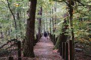 Randonnée Accompagnée autour du Simserhof