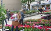 Marché aux Fleurs à Hayange