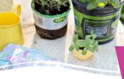 Aménager son jardin avec des enfants CPIE Meuse 55160 Bonzée du 26-05-2021 à 09:00 au 26-05-2021 à 12:00
