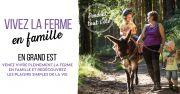 L'été à la Ferme en Lorraine et Grand Est Meurthe et Moselle, Meuse, Moselle, Vosges du 03-07-2021 à 10:00 au 05-09-2021 à 18:00