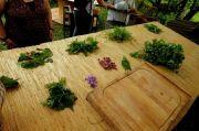 Atelier Cuisine et Balade Plantes Comestibles Moussey 88210 Moussey du 16-07-2021 à 10:00 au 11-09-2021 à 14:30