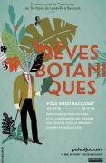 Exposition « Rêves Botaniques » au Pôle Bijou Baccarat 54120 Baccarat du 05-07-2018 à 10:00 au 18-11-2018 à 17:00