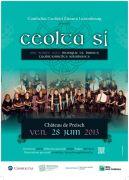 Concert musique irlandaise Château de Preisch 57570 Basse-Rentgen du 28-06-2013 à 17:30 au 28-06-2013 à 20:30